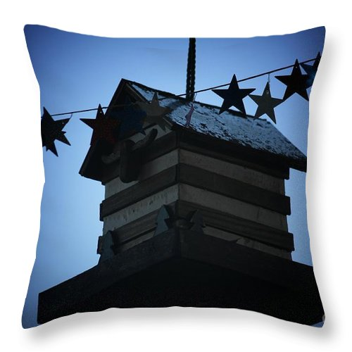 Stars And Stripes Throw Pillow featuring the photograph American Bird House by Brandi Maher
