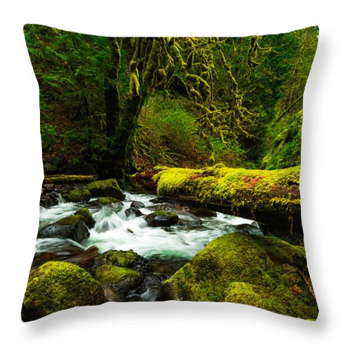 Northwest Throw Pillow featuring the photograph American Jungle by Chad Dutson