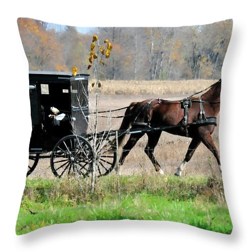 Amish Buggy Throw Pillow featuring the photograph Amish Buggy by David Arment