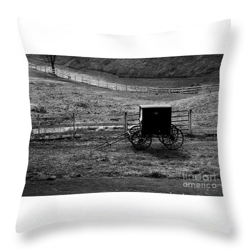 Amish Throw Pillow featuring the photograph Amish Buggy by Kathleen Struckle
