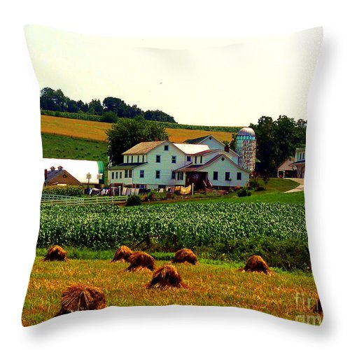 Amish Farm Throw Pillow featuring the photograph Amish Farm On Laundry Day by Desiree Paquette