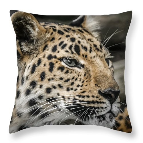 Animals Throw Pillow featuring the photograph Amur Leopard by Ernie Echols