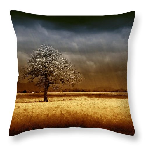 Landscapes Throw Pillow featuring the photograph And The Rains Came by Holly Kempe