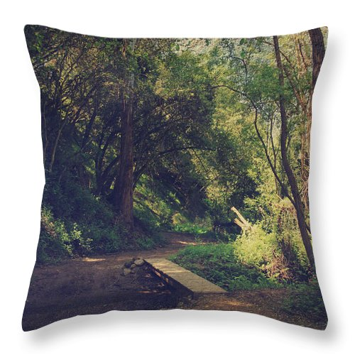 Don Castro Regional Park Throw Pillow featuring the photograph And Yet So Far by Laurie Search