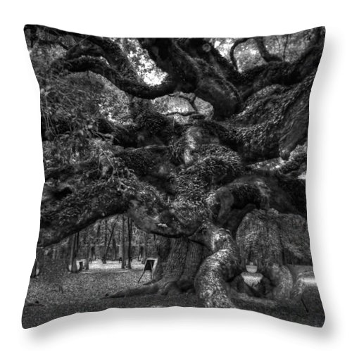 Angel Throw Pillow featuring the photograph Angel Oak Tree 2 by Kathleen Struckle