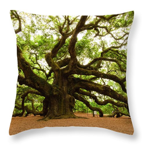 Tree Throw Pillow featuring the photograph Angel Oak Tree 2009 by Louis Dallara