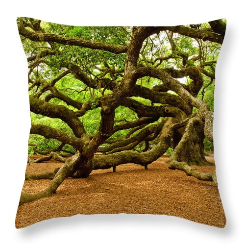 Nature Throw Pillow featuring the photograph Angel Oak Tree Branches by Louis Dallara