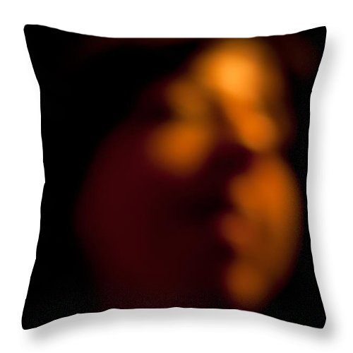 artistic Impression Throw Pillow featuring the photograph Angelic Image by Paul Mangold