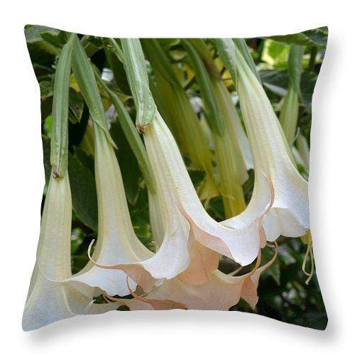 Nature Throw Pillow featuring the digital art Angel's Trumpet Flower by Eva Kaufman