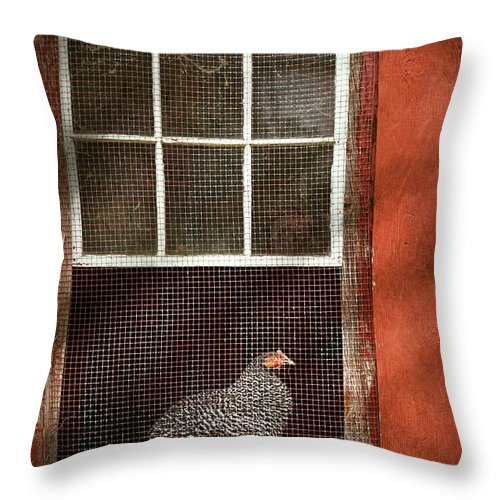 Chick Throw Pillow featuring the photograph Animal - Bird - Chicken In A Window by Mike Savad