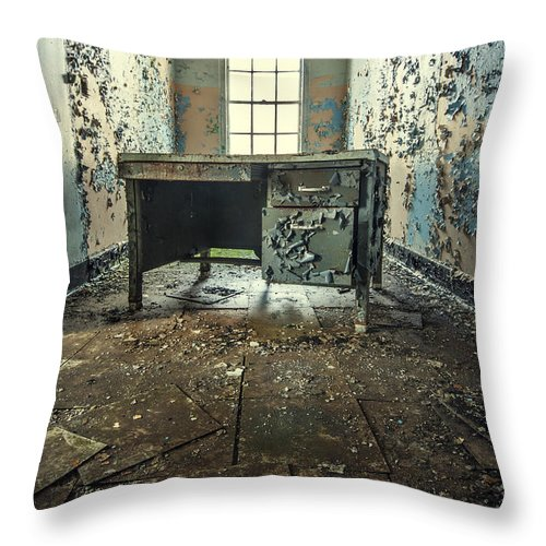 Kings Park Throw Pillow featuring the photograph Another Day At The Office by Evelina Kremsdorf