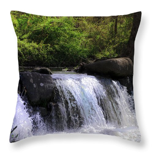 Another Throw Pillow featuring the photograph Another Hidden Waterfall by Bill Cannon