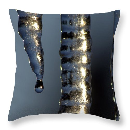 Ice Throw Pillow featuring the photograph Anticipation by Kenny Glotfelty