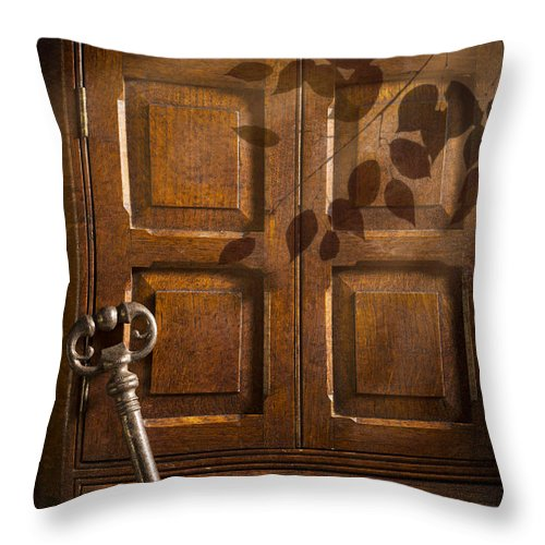 Antique Throw Pillow featuring the photograph Antique Cabinet by Amanda Elwell