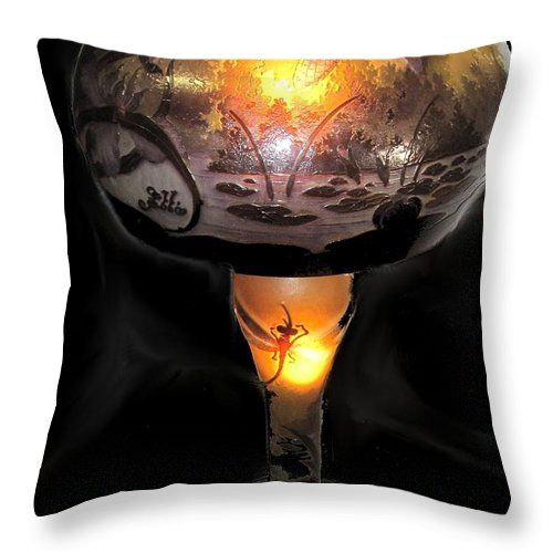 Antique Throw Pillow featuring the photograph Antique Dragon Fly Lamp by Ian MacDonald