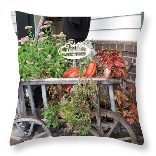 Antique Throw Pillow featuring the photograph Antique Goat Cart by Barbara McDevitt