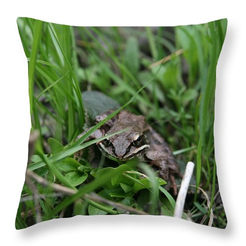 Frog Portrait Throw Pillow featuring the photograph Anura by Neal Eslinger