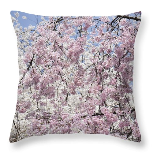 Aoyama Cemetery Throw Pillow featuring the photograph Aoyama Cemetery Sakura Tokyo by For Ninety One Days