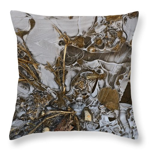 Ice Throw Pillow featuring the photograph Apparitions On Ice by Susan Capuano
