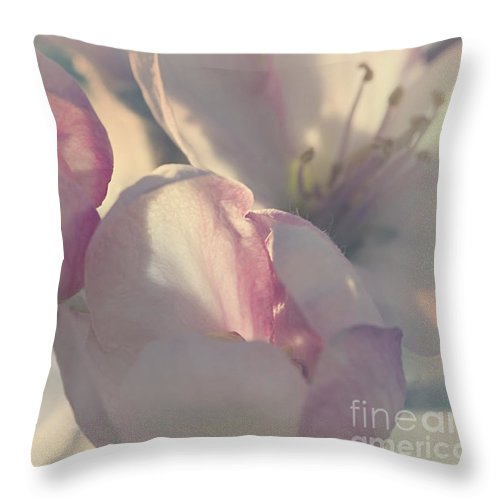 Apple Throw Pillow featuring the photograph Apple Blossom by Janique Robitaille