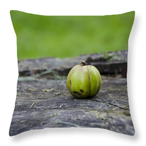 Apple Throw Pillow featuring the photograph Apple Gourd by Bill Cannon