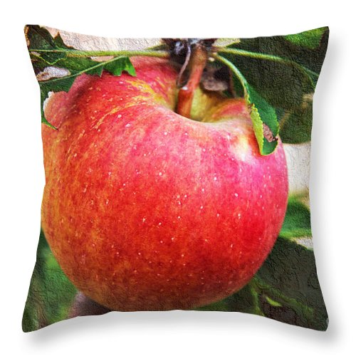 Apple On The Vine Throw Pillow featuring the photograph Apple On The Tree by Andee Design