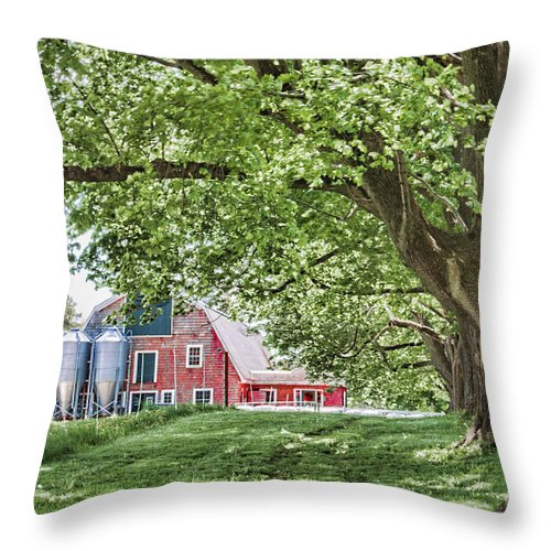 Tree Throw Pillow featuring the photograph Appleton Barn by K Hines
