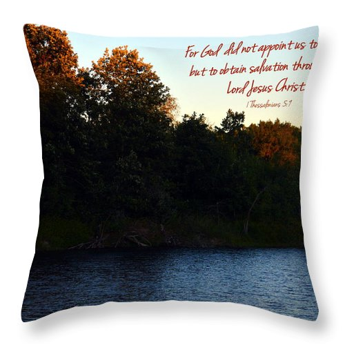 Lake Throw Pillow featuring the photograph Appointed by Kim Blaylock