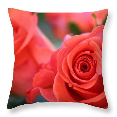 Roses Throw Pillow featuring the photograph Apricot Beauty by Judy Palkimas