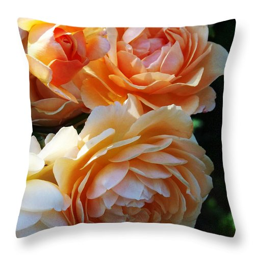 Flowers. Plants Throw Pillow featuring the photograph Apricot Dahlias by Kathy McClure