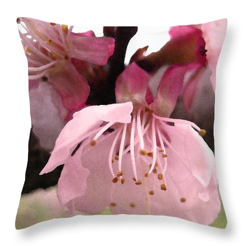 Apricot Throw Pillow featuring the photograph Apricot Spring by Kathy Bassett