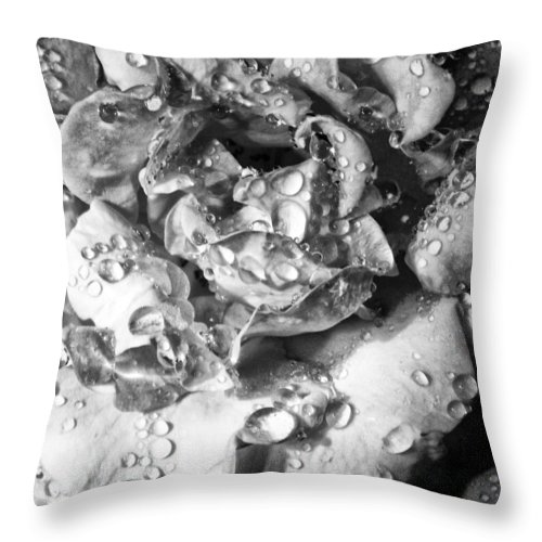 William Dey Throw Pillow featuring the photograph April Rose Bw Palm Springs by William Dey