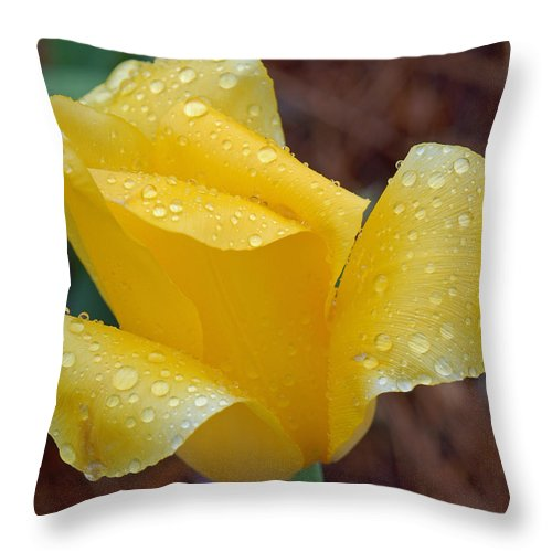 Yellow Throw Pillow featuring the photograph April Showers by Suzanne Gaff