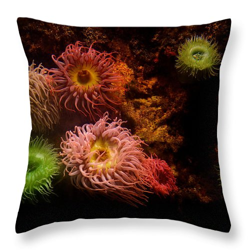 Animal Throw Pillow featuring the photograph Aquatic Bloom by Marlene Frazier