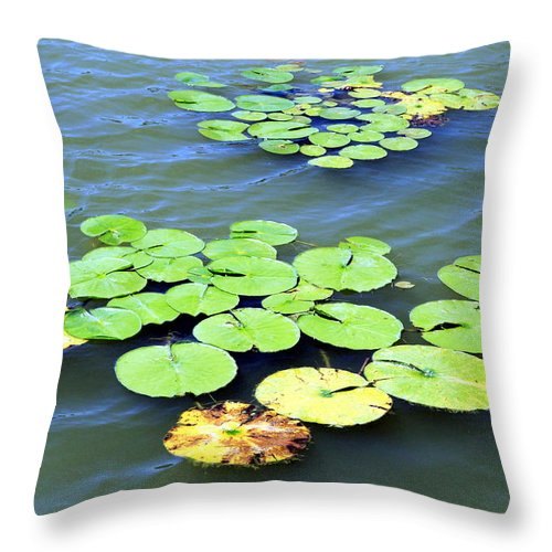 Aquatic Throw Pillow featuring the photograph Aquatic Plants by Valentino Visentini
