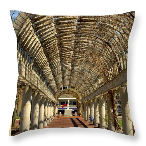Boston Throw Pillow featuring the photograph Arbor In Boston by Caroline Stella