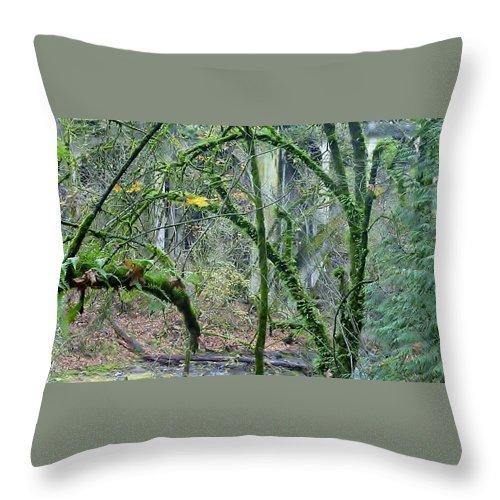 Photo Of Arched Bridge Through Trees Throw Pillow featuring the photograph Arch Bridge Through Trees by Susan Garren