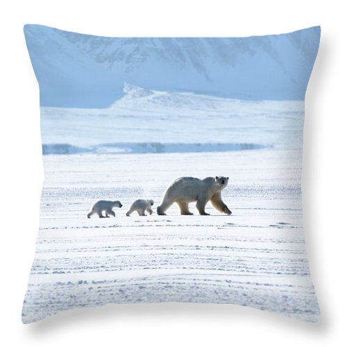 Arctic Throw Pillow featuring the photograph Arctic Family by David Broome