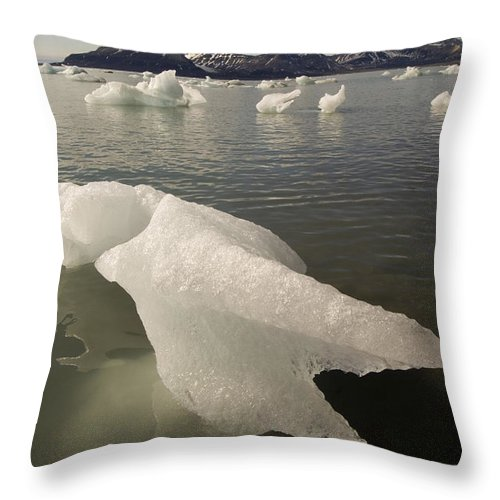 Iceberg Throw Pillow featuring the photograph Arctic Ice Floe by John Shaw