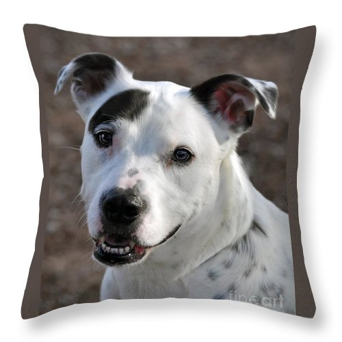Portrait Throw Pillow featuring the photograph Are You Looking At Me? by Savannah Gibbs