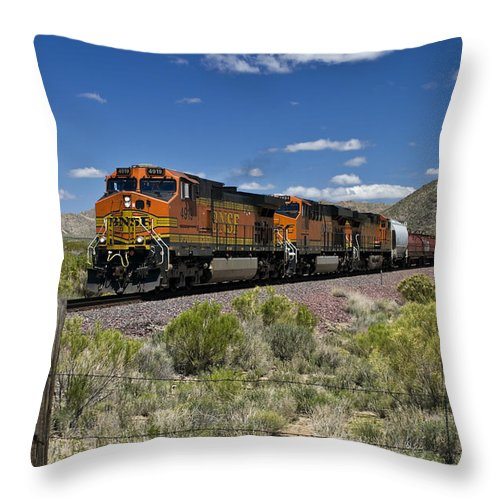Train Throw Pillow featuring the photograph Arizona Express by Paul Riedinger