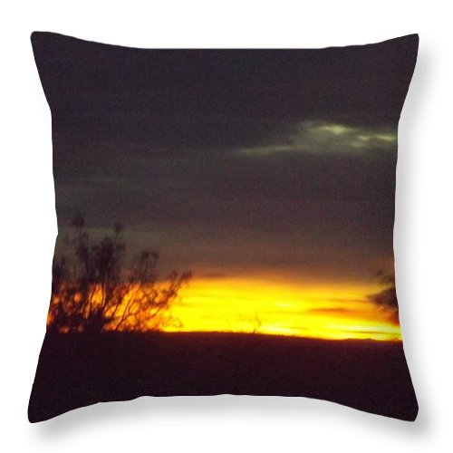 Arizona Throw Pillow featuring the digital art Arizona Landscape by Ana Thompson