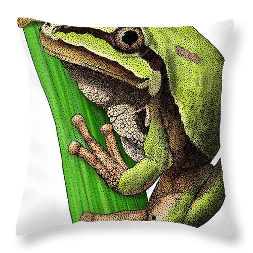 Arizona Tree Frog Throw Pillow featuring the photograph Arizona Tree Frog by Roger Hall
