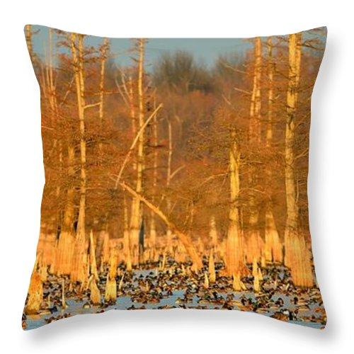 Mallard Throw Pillow featuring the photograph Arkansas Ducks by Kevin Pugh