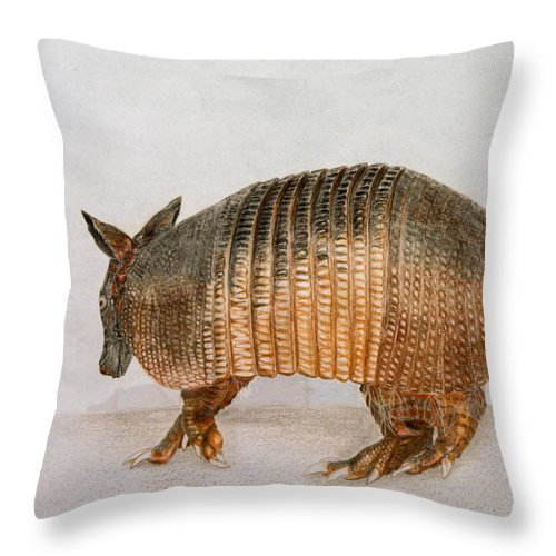 Armadillo Throw Pillow featuring the drawing Armadillo by Zina Stromberg