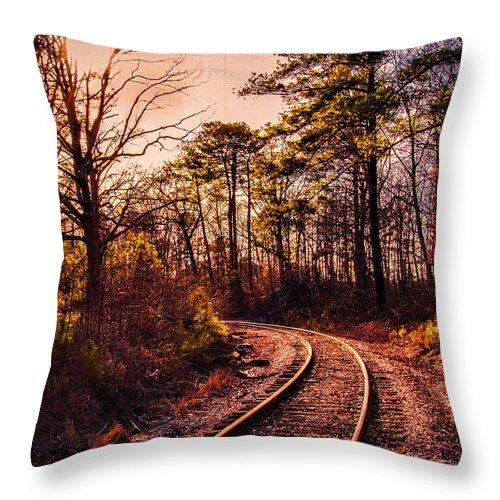 Weldon Throw Pillow featuring the photograph Around The Bend by Robert Mullen