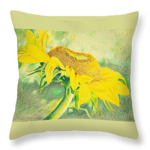 Sunflower Art Print Throw Pillow featuring the mixed media Sunflower Print Art For Sale Colored Pencil Floral by Diane Jorstad