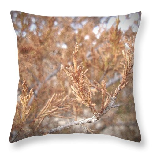 Nature Throw Pillow featuring the photograph Artful Nature by Annie Adkins