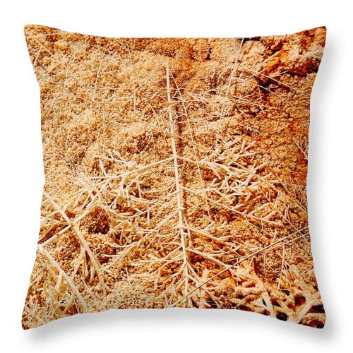 Mammoth Throw Pillow featuring the photograph Artifacts by Kathy Sampson