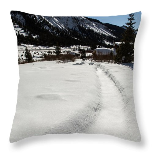 Winter Throw Pillow featuring the photograph Artist Cabin Snowy Pathway by John Daly
